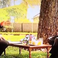 Robert-Mugabe-Interview-With-Dali-Tambo