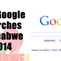 Top-Google-searches-Zimbabwe-2014