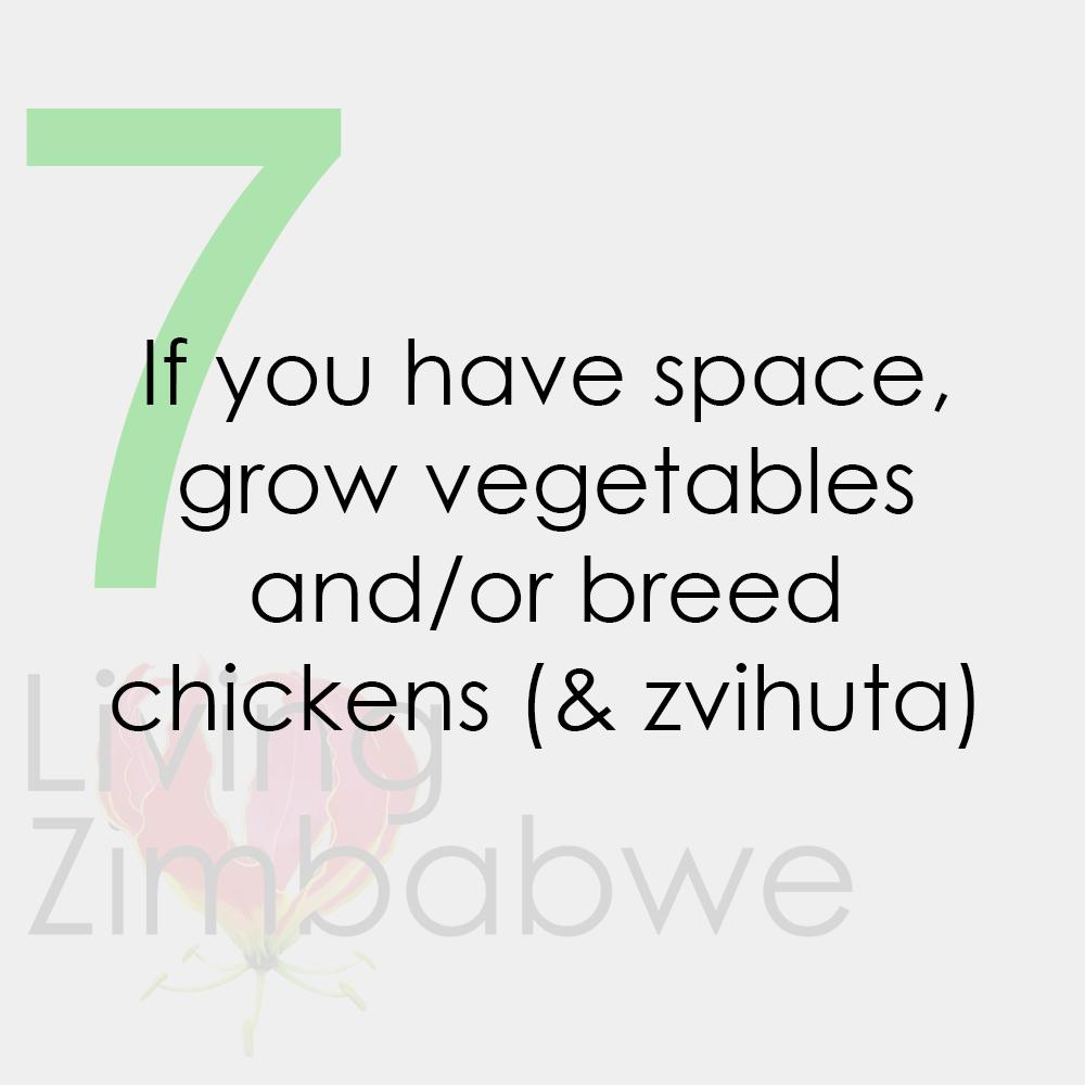 Grow-Vegetables-Breed-Zvihuta-Surviving-Zimbabwe-Bond-Notes-LZ