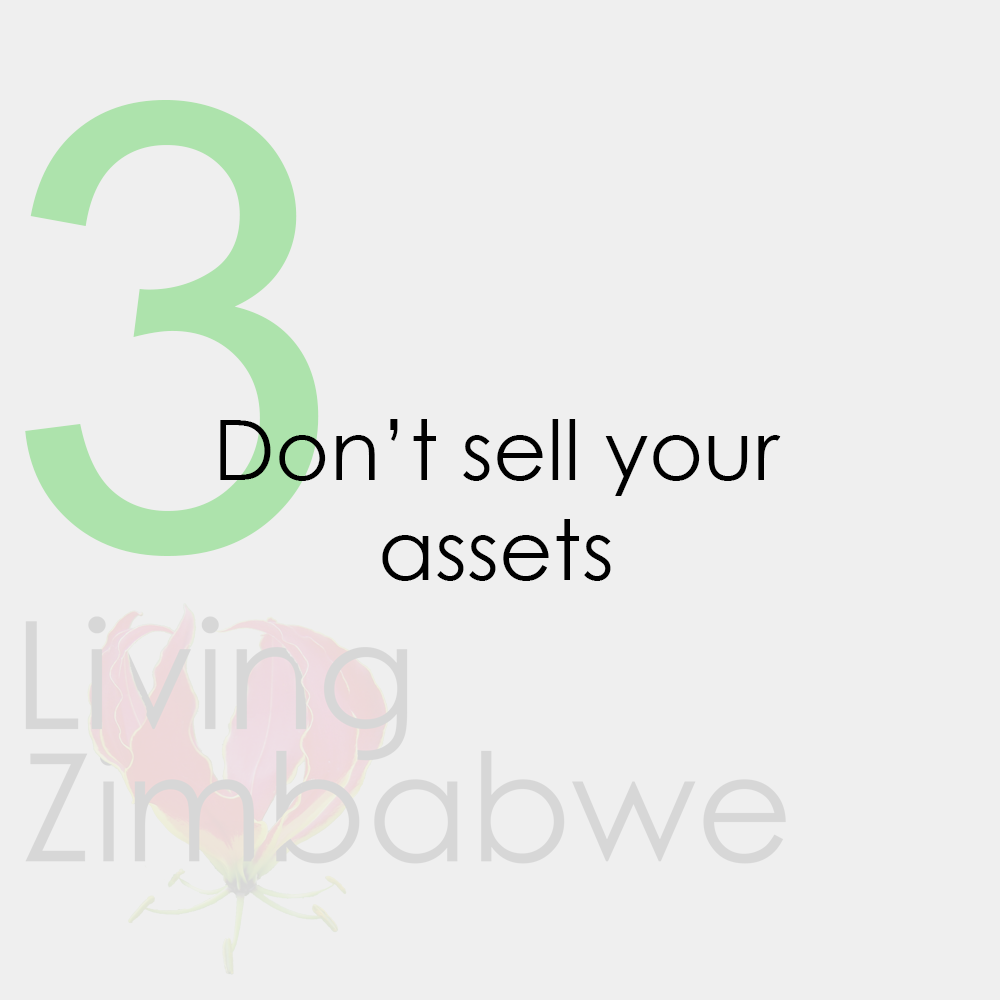 Keep-Assets-Surviving-Zimbabwe-Bond-Notes-LZ