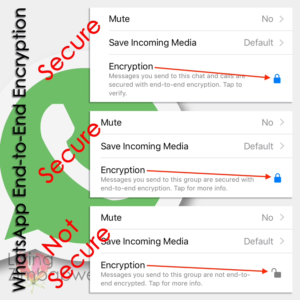WhatsApp-End-to-End-Encryption-Living-Zimbabwe