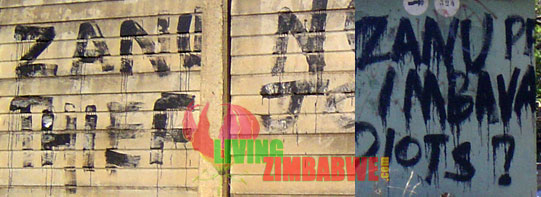 Politically Charged Graffiti In & Around Harare